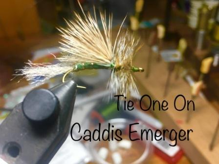 TOOT caddis emerger